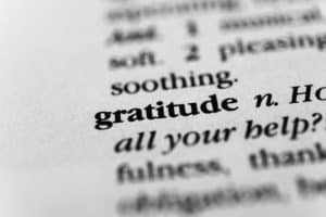 How to Feel Gratitude for Crappy Things | Gratitude Statements
